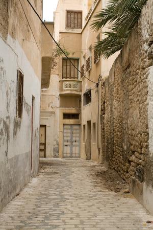 puertas de madera: Calle con puertas de madera y arbustos en Mahdia. Túnez. África.