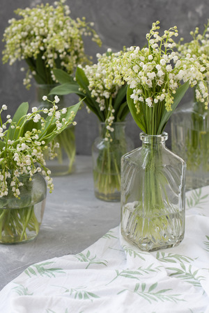 Wresh bouquets of lilies of the valley in glass vases on the white tablecloth on the gray background.