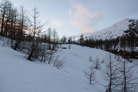 Snowy panorama of the Val Bognanco that opens behind Domodossola, Piedmont, Italy Stockfoto