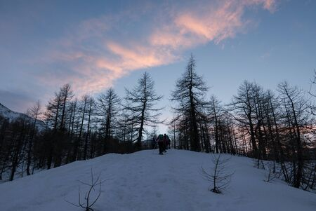 Group of hikers trekking in the mountains of the Alps. The trekkers are going through a snowy forest at the sunset, Italy