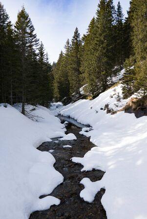 Mountain stream makes its way through melting snow, italy
