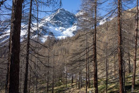 View of the snow-capped peaks of the Val dAyas in the Aosta Valley. Italy Stockfoto