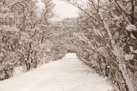 Winter time in southern Utah Mountains, Parowan Canyon area