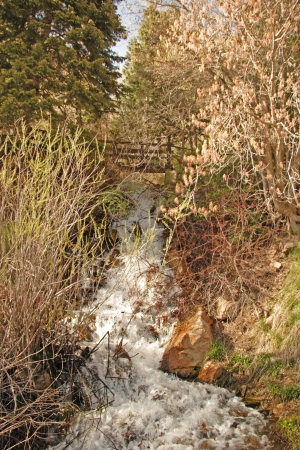 wasatch: Stream Of Water in Wasatch Mountain above Salt LAKE City Utah With Bridge In Bacground