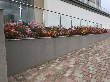 Constructed concrete block work planter box with Beautiful plants and flowers near staircase entrance and stairs with Stainless steel handrails and glass panels tempered for elegant entrance at office