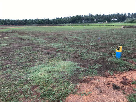 Farm land converted into real estate business due to recession or crisis 版權商用圖片