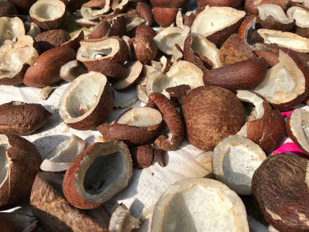 Sweet Coconut shells cut into half kept in direct sun light for dry process so that Coconut hair oil manufacturing steps