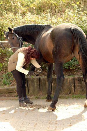 Groom cleans a hoof of horse .
