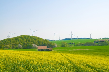alternative energy sources: Alternative energy sources - windmills, and canola oil.