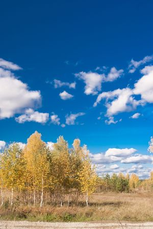 Beautiful rural landscape wit blue sky and river Stock Photo - 6895548
