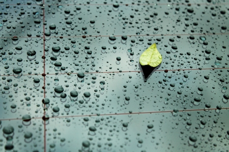 Rain drop on glass car with green leaf Stock Photo