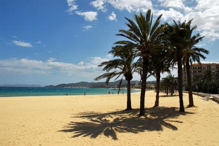 Beach of Lavandou