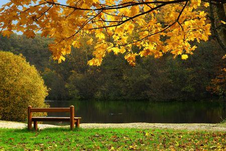 Pond en otoño  Foto de archivo - 2037084