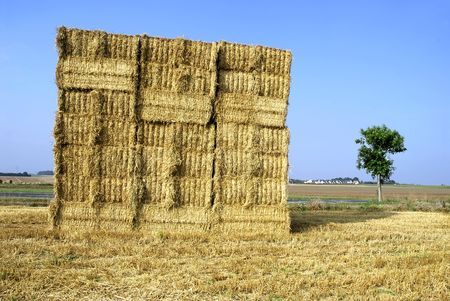 Cube of straw photo