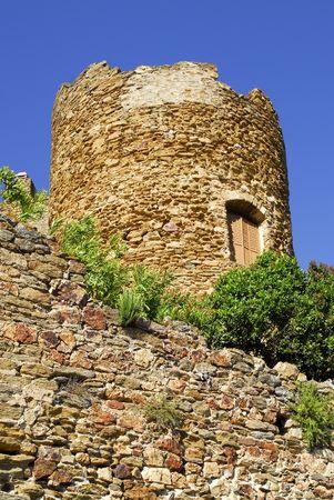 mimose: Castello di Torre a Bormes les Mimosas in Francia