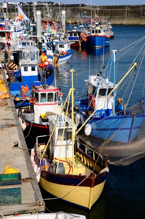 littoral: Fishing boats in the port Maria at Quiberon in the Morbihan department in Brittany in north-western France.