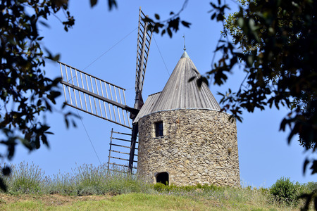 foliage tree: Windmill with foliage tree at Grimaud, commune in the Var department in the Provence-Alpes-Cote Azur region in southeastern France