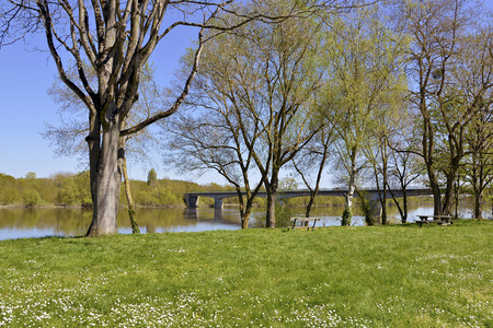 candes: The banks of the Vienne river at Candes-Saint-Martin with trees, commune in the Indre-et-Loire department , Centre region in France