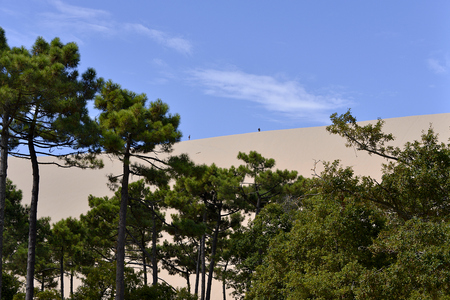 Famous Dune of Pilat and pine forest Located in La Teste-de-Buch in the Arcachon Bay area, in the Gironde department in southwestern France Stock Photo