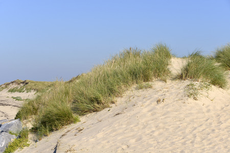 manche: Dune of Pirou, a town in the peninsula of Cotentin in the Manche department in Lower Normandy in north-western France