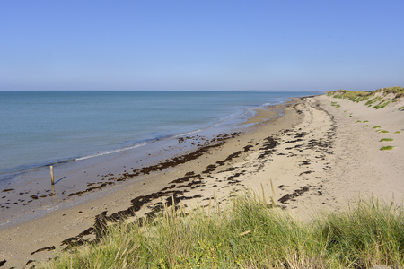 wrack: Beach and dune of Pirou, a town in the peninsula of Cotentin in the Manche department in Lower Normandy in north-western France