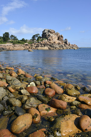 ploumanach: Famous Pink Granite Coast (pink granite coast in french) at low tide of Ploumanach, village in the town of Perros-Guirec. It is found in the Region Bretagne in the Côtes dArmor department in the west of France.