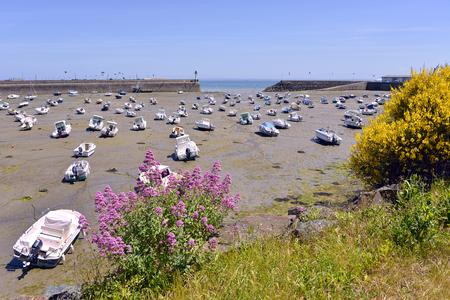 Haven en bloemen van Saint-Quay-Portrieux, gemeente in het departement C? 'Tes-d'Armor van Bretagne in het noordwesten van Frankrijk.