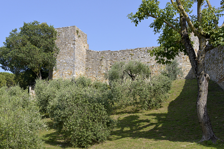 Fortifications among olive trees of San Gimignano is a walled medieval hill town in the province of Siena, Tuscany, north-central Italy, famous for its fourteen towers houses