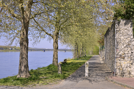 The banks of the Loire river at Saumur with trees and the modern bridge in the background, commune in the Maine-et-Loire department, Pays de la Loire region in western France.