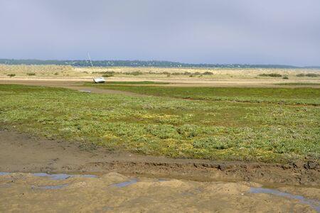 Lagune à marée basse et la dune de fond au Cap-Ferret, une commune française du département de la Gironde dans le sud-ouest de la France Banque d'images