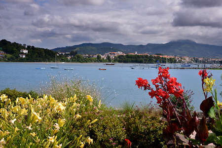 Flowers and red cannas in the port of Hendaye, a commune in the Pyrénées-Atlantiques department and Nouvelle-Aquitaine region of southwestern France.
