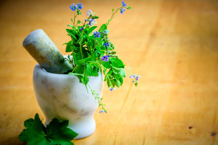 healthy natural herbs and spices