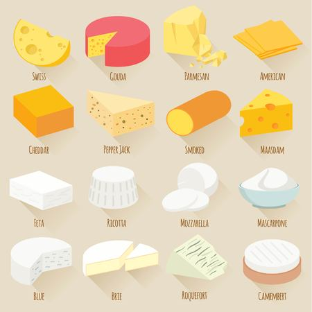chunk: Popular kind of cheese. Flat design vector icon set.