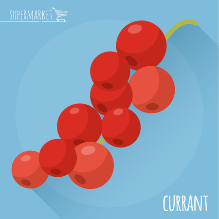currant: Red currant.  Long shadow flat design vector icon.