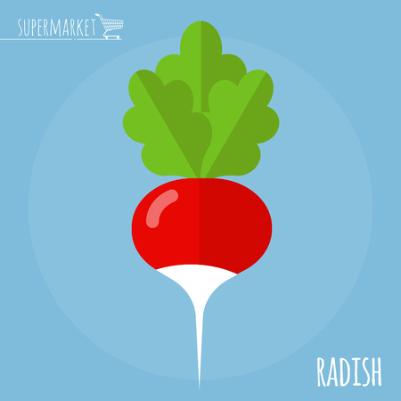 Radish.  Long shadow flat design vector icon. Illustration