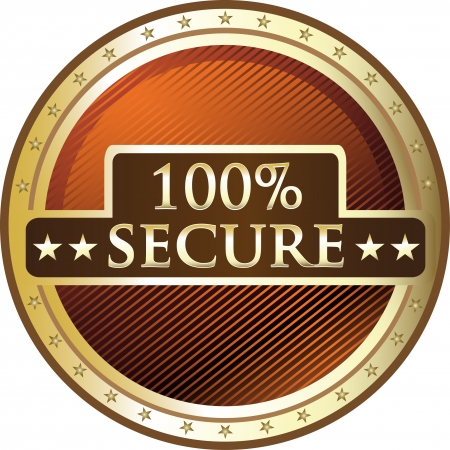 Hundred Percent Secure Award Vector