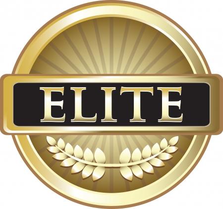 エリートの純粋なゴールド賞  イラスト・ベクター素材