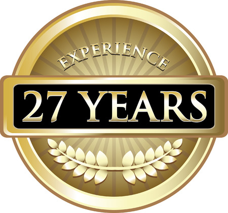 Twenty Seven Years Experience Icon 矢量图像
