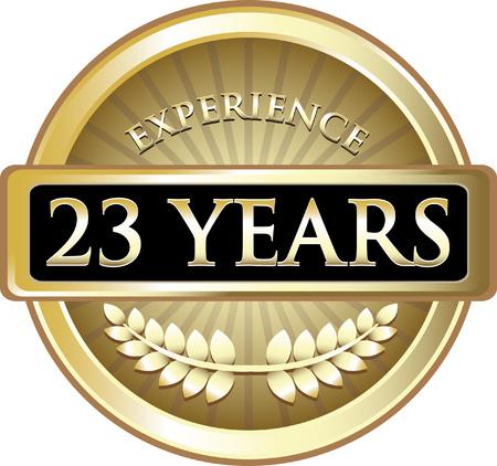 Dreiundzwanzig Jahre Erfahrung Icon Standard-Bild - 84360049