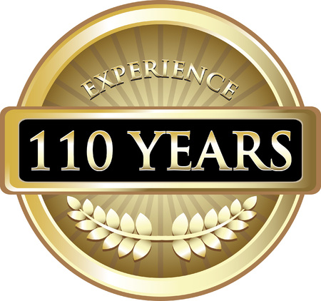 one hundred and ten: One Hundred Ten Years Experience Icon