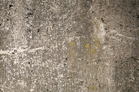 Mossy gray rough concrete wall texture