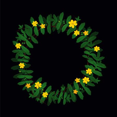 Potentilla anserina green yellow plant leaf flower wreath border frame decoration on black