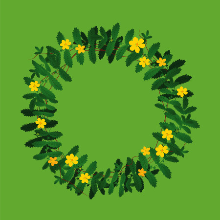 Potentilla anserina green yellow plant leaf flower wreath border frame decoration on green