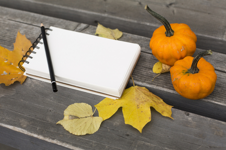 Autumn composition in the park with leaves notebook and pumpkin