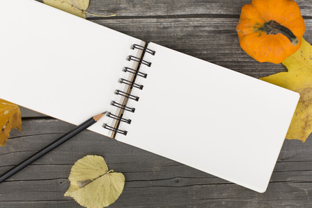 Autumn composition with blank open notebook Stock Photo