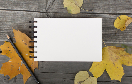 Autumn composition with blank notebook and fallen leaves Stock Photo