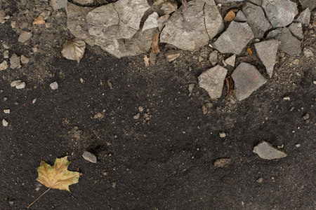 Dark autumn damp ground with pieces of plaster Stock Photo