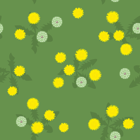 Summer bright yellow and white dandelions seamless pattern