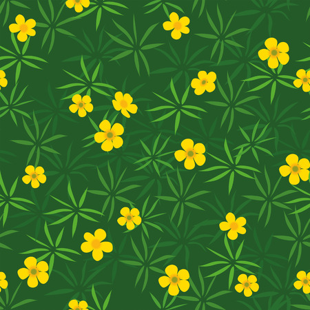 Summer field of yellow buttercups seamless pattern Illustration