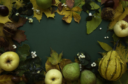 Dark green autumn top view background frame